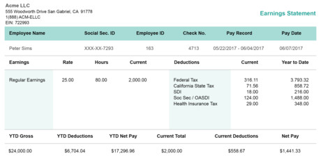 horizontal green pay stub template